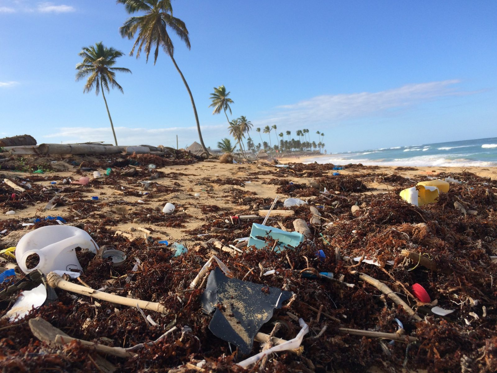 Beating Plastic Pollution