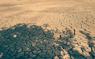 The complex relationship between climate change and migration