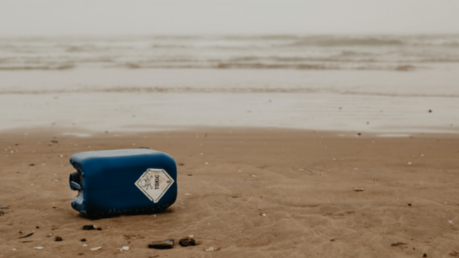 plastic container on beach